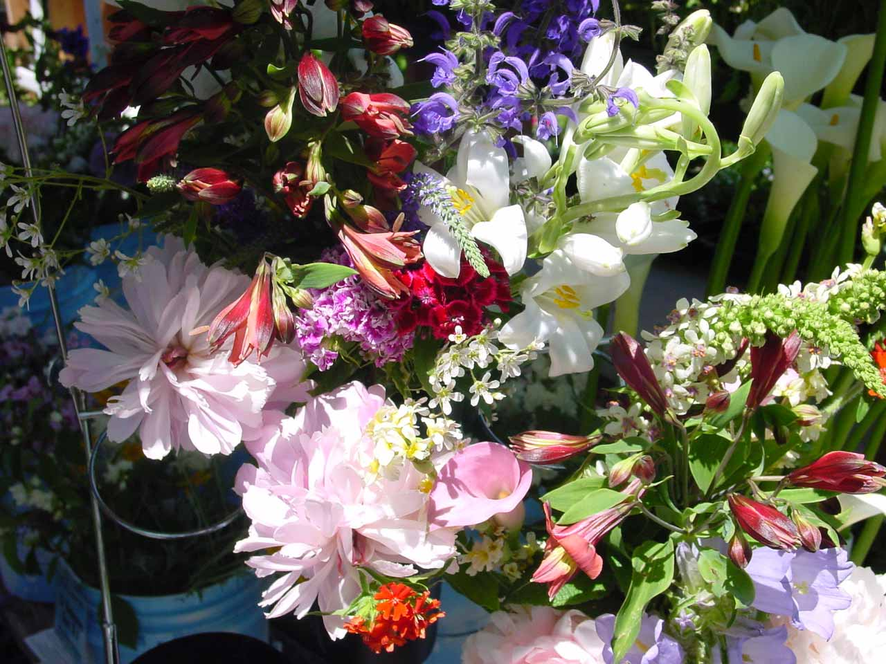 Mixed Flowers at Market